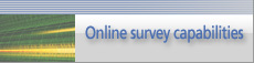 Online survey capabilities